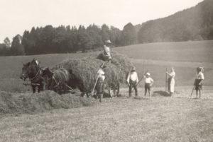 Berghammer Gmund - Heuernte in den vierziger Jahren