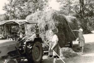 Berghammer Gmund - Heuernte in den sechziger Jahren