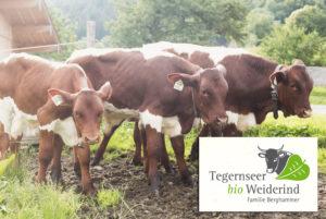 Tegernseer Bio Weiderind Berghammer
